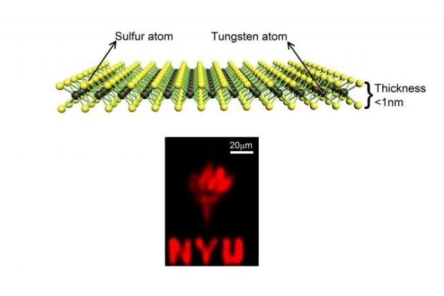 Nano Tungsten Disulfide