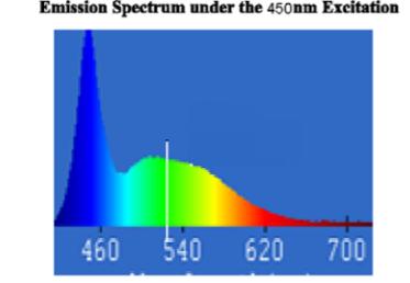 PM2864 Yellow Green Aluminate Phosphor Powder (YG513)
